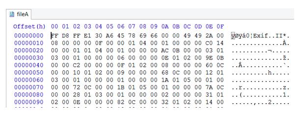 Hexadecimal Editor Screenshot
